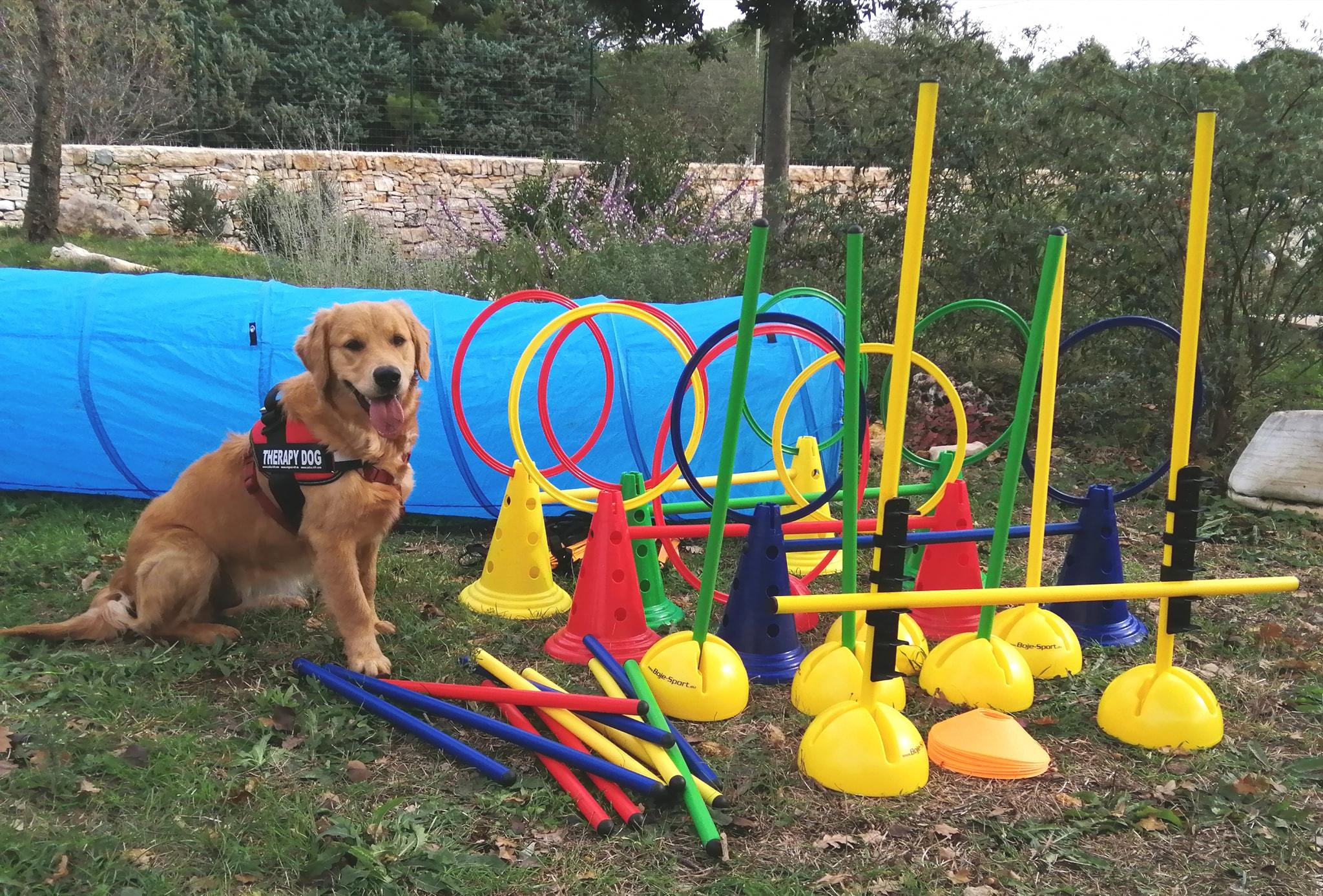 animali bambini fanel coppola interventi assistiti animali Loving dogs Macaranga bosco murgia natura puglia Ruvo di Puglia
